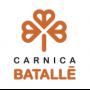 TREBALLS D'IGNIFUGACIÓ A CÀRNICA BATALLÉ, S.A. DE RIUDARENES