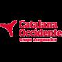 TREBALLS D'IGNIFUGACIÓ ALS VESTÍBULS DE LES OFICINES DE CATALANA OCCIDENT DE BARCELONA
